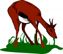Fawn Clipart
