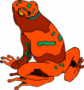 Toad Clipart