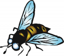 Wasp Clipart