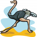 Royalty Free Ostrich Clipart