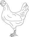Chicken Clipart