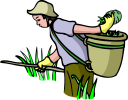 Harvest Clipart