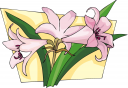 Lily Clipart