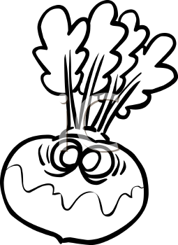 Royalty Free Turnip Clipart