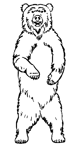 Gallery Angry Bear Standing Drawing