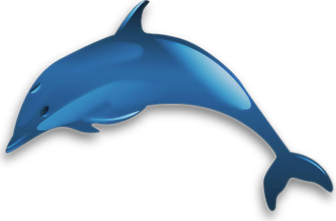 Free Common Dolphin Clipart