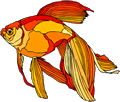 Free Orange Fish Clipart