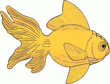Free Yellow Fish Clipart, 1 page of Public Domain Clip Art