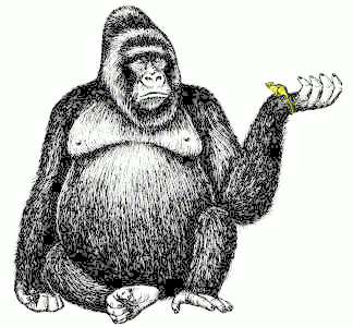 Search Terms: black and white, bw, coloring page, gorilla, great ape ...