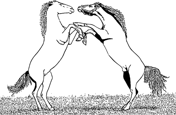 Free Fighting Stallions Clipart