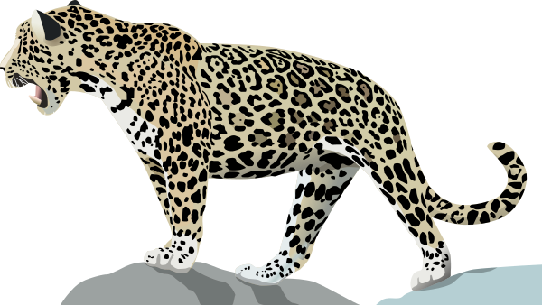 Free Jaguar Clipart Clipart Picture 6 Of 7