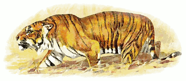 Free Hunting Tiger Clipart