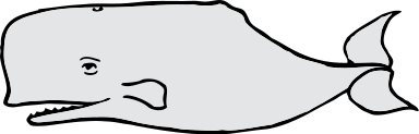 Free Sperm Whale Clipart