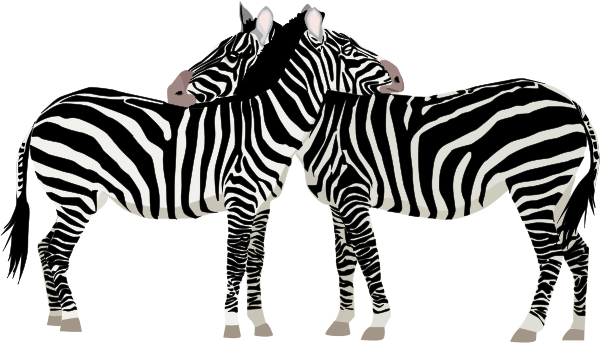 Free Black and White Zebra Clipart