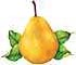 Free Pear Clipart