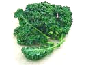 Free Kale Clipart