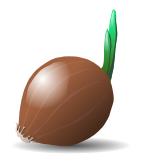 Free Onion Clipart