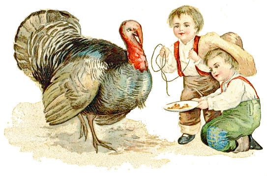 Free Tom Turkey Clipart