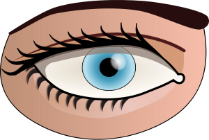 Free Eye Color Clipart