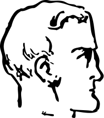 Free Male Chin Clipart