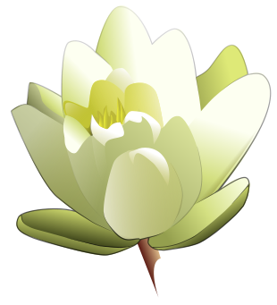 Free Lily Clipart
