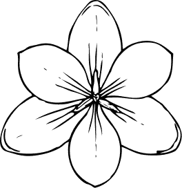White Tulip Clipart. White. Free Image About Wiring Diagram ...