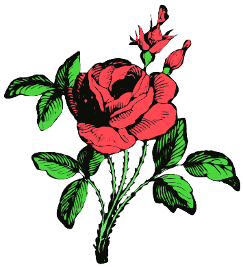 free rose clipart public domain flower clip art images and graphics rh clipartpal com free roses clipart and images free rose clip art images
